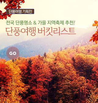 가을단풍여행기획전