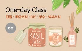 Oneday Class