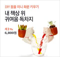 DIY 미니 화분 키우기(마음이 평온~)