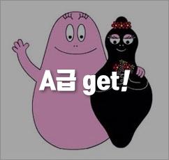 개똥이네 중고전집★바바파파 外